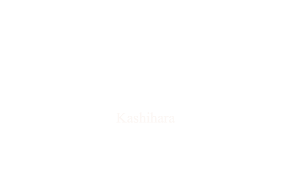 Theory Kashihara