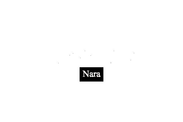 Theory Nara