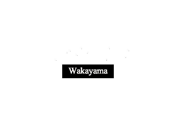 Theory Wakayama